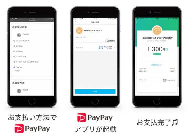 paypay_case
